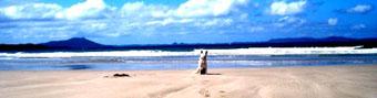 Beach_20090103014823.jpg